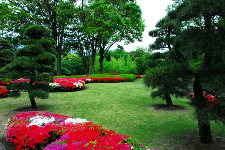 1533 - Imperial Palace Gardens Japan