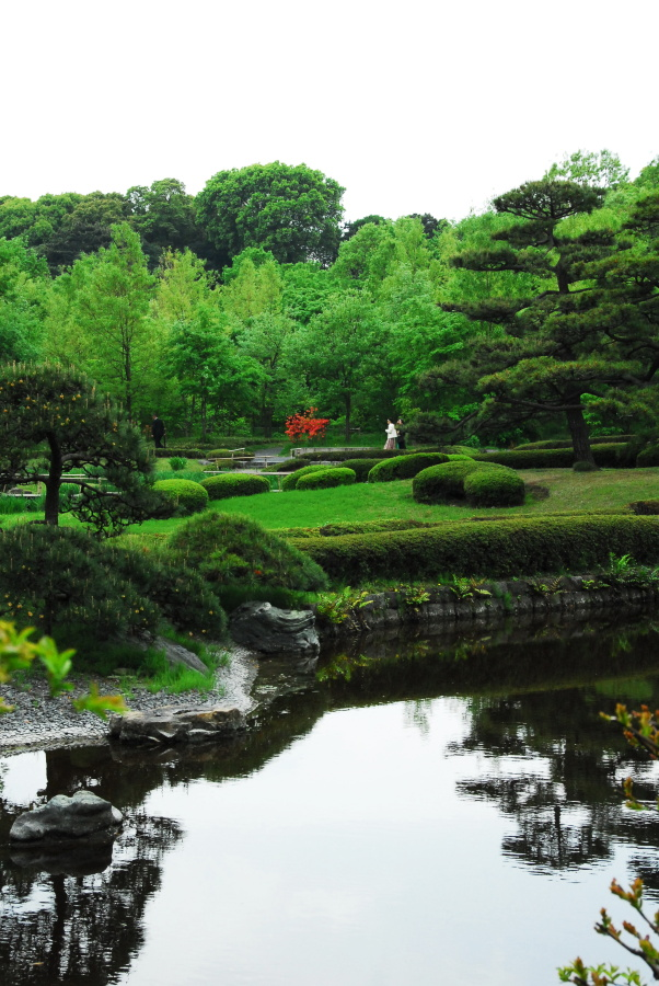 1539 - Imperial Palace Gardens Japan