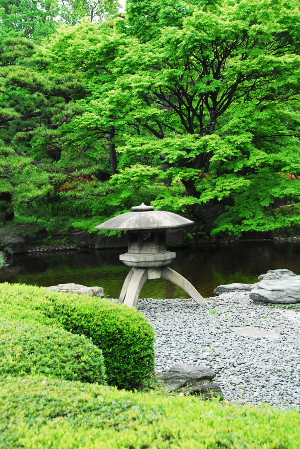 1541 - Imperial Palace Gardens Japan