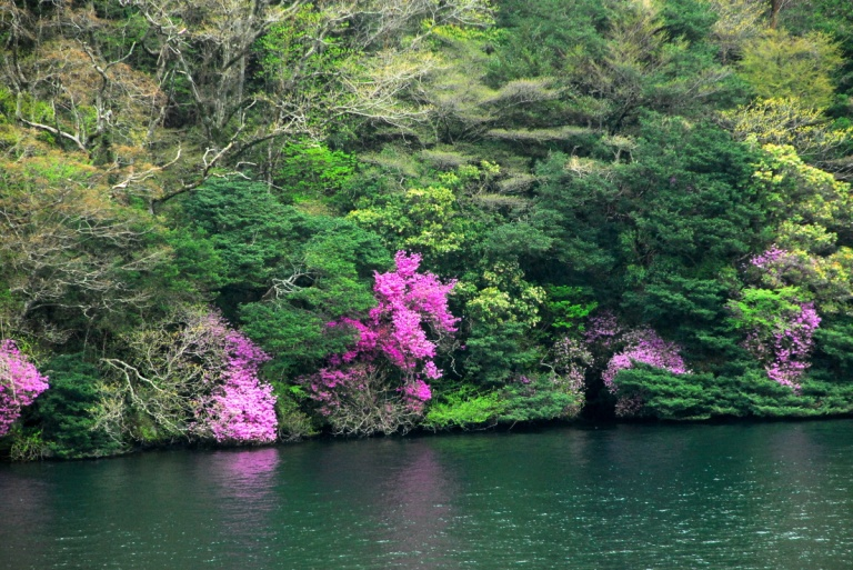 1591 - Lake Hakone Japan