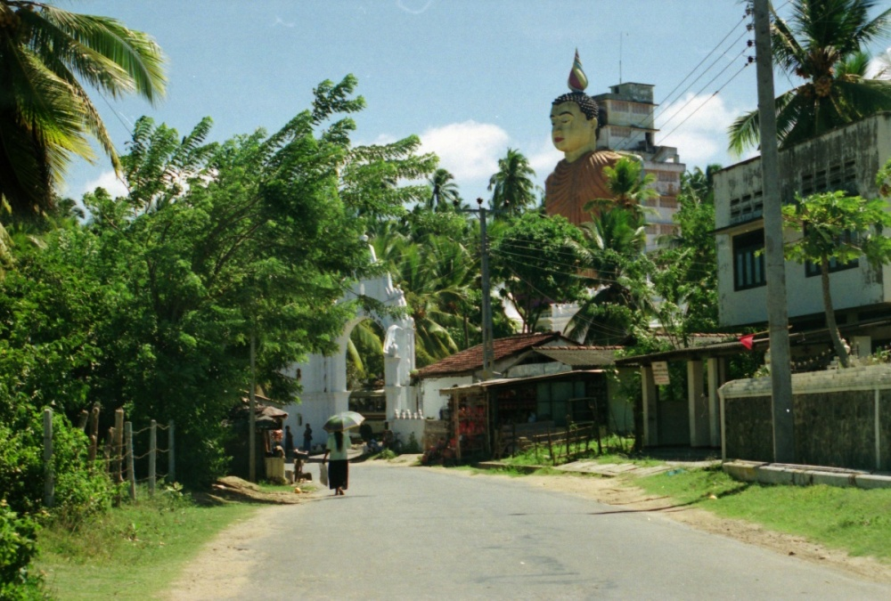 291 - Road to Galle