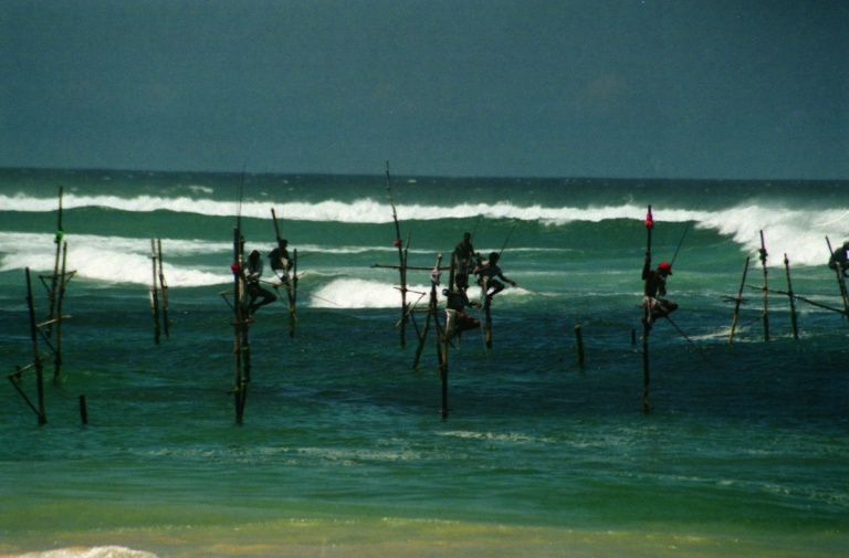 299 - Stilt fisherman near Galle