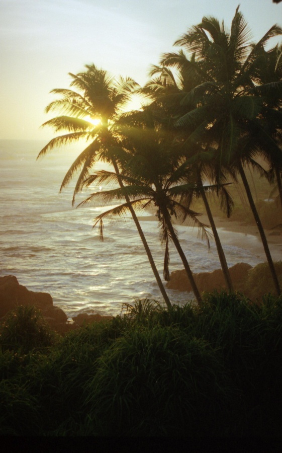 314 - Galle