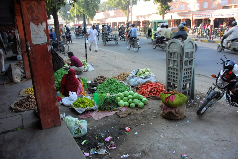 482 - Fruit Shop Jaipur Rajasthan