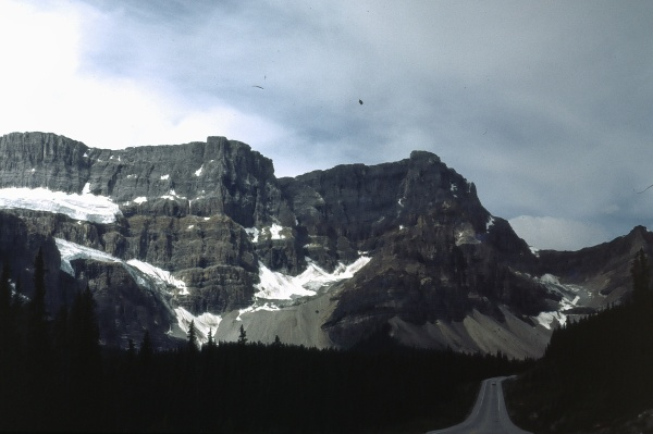 8-51 - Icefields Parkway Canada