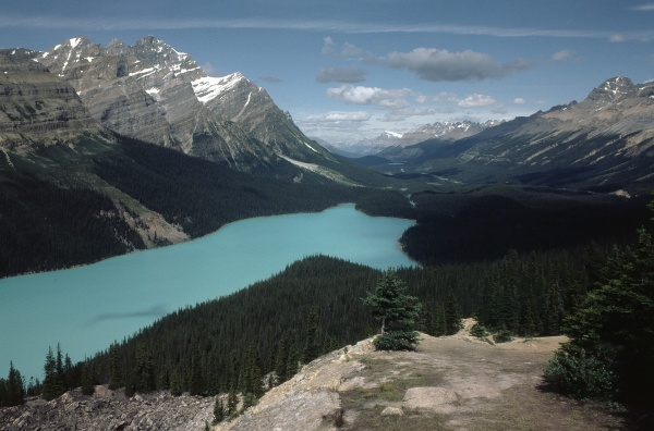 8-56 - Icefields Parkway Canada