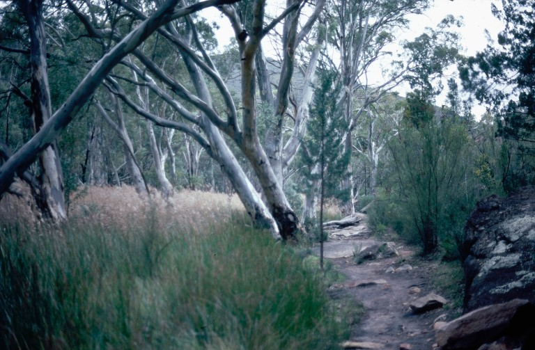 1-47-wilpena-ponund-flinders-ranges-south-australia