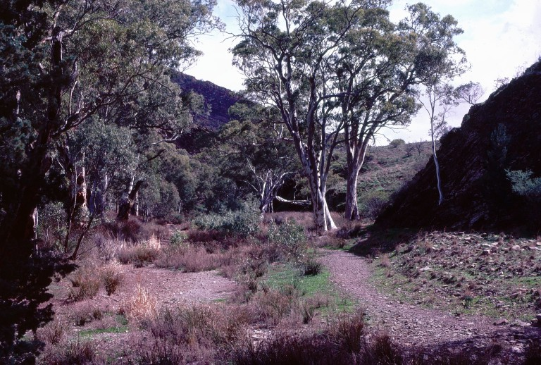 1-58-flinders-ranges-south-australia
