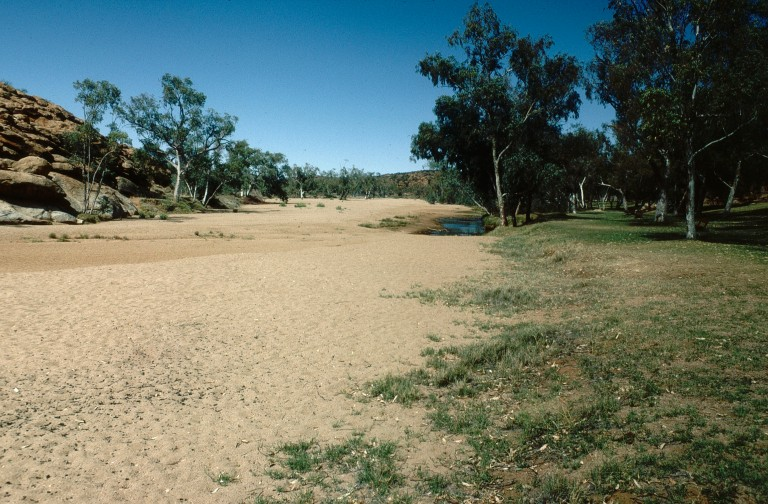 79-todd-river-alice-springs-northern-territory
