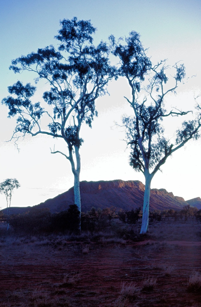 88-alice-springs-northern-territory