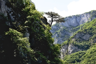 Bosnian Countryside - Piva Canyon